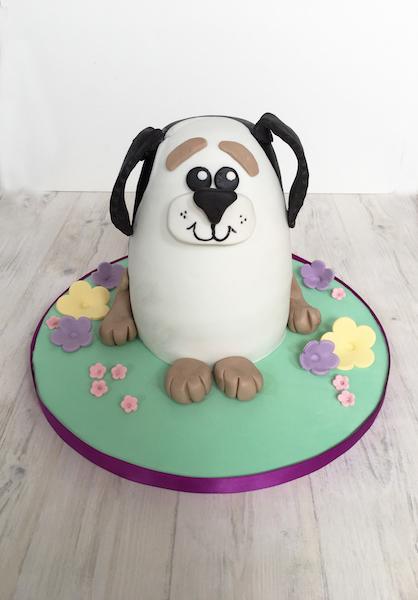 Children S Birthdays Cakeity Cakes